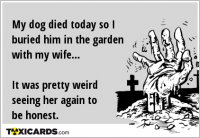 My dog died today so I buried him in the garden with my wife... It was pretty weird seeing her again to be honest.