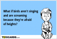 What if birds aren't singing and are screaming because they're afraid of heights?