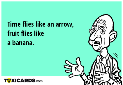 Time flies like an arrow, fruit flies like a banana.
