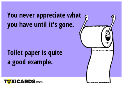 You never appreciate what you have until it's gone. Toilet paper is quite a good example.